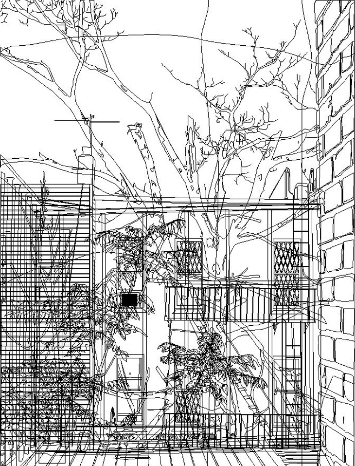 Brooklyn Landscape line work